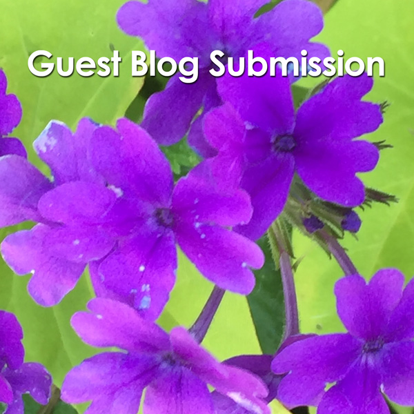 Blog Submission Form