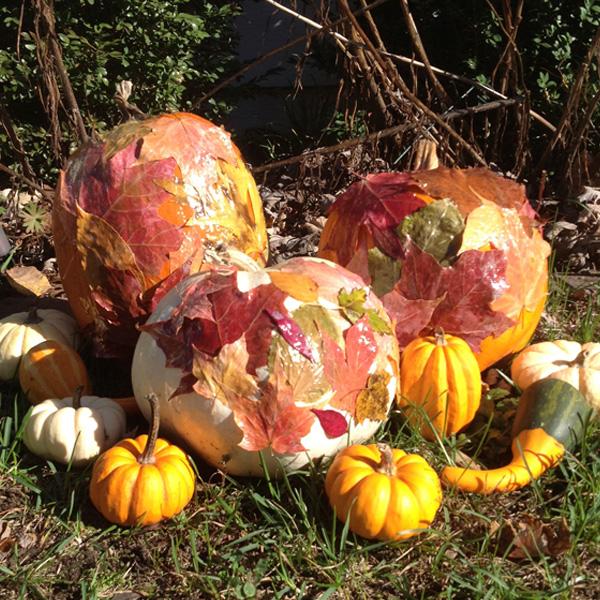 Fall Pumpkin Mod Podge Idea
